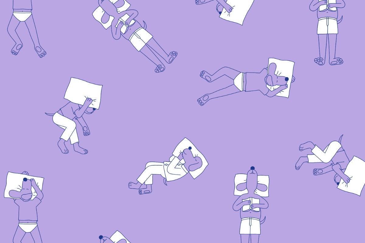 Illustration of sleeping dogs