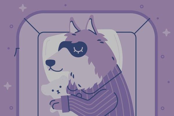 A dog sleeps with an eye covering on. Illustration